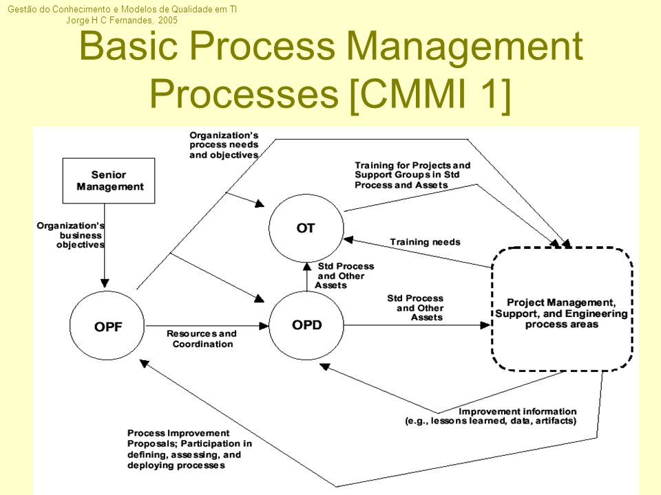 Basic Process Management Processes [CMMI 1]